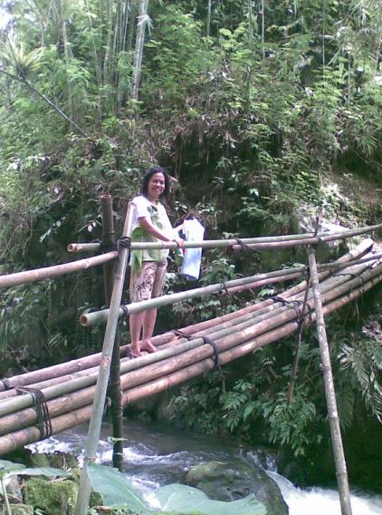 wisata desa lumajang kebun salak pondoh lumajang