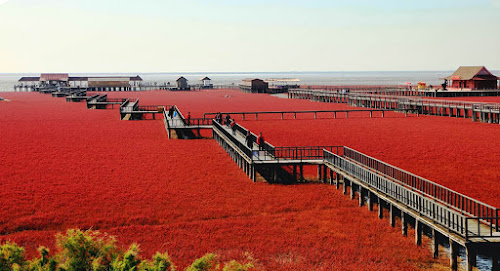 China - Red beach