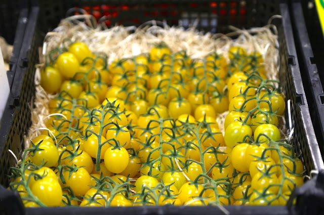 yellow tomatoes, Sète market, languedoc, france