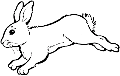 Gambar mewarnai kelinci - 4