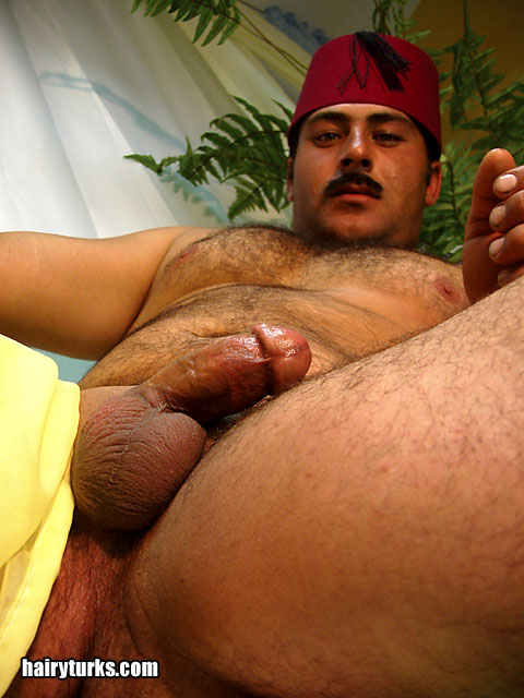 Hairy old orient gay
