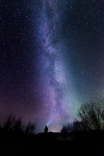 Silhouette Photography Of Person Under Starry Sky