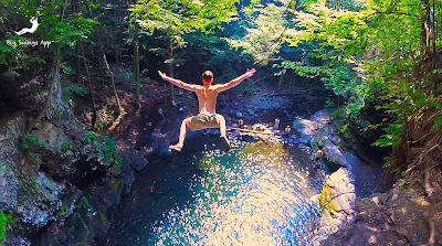 Seven Secret Swimming Holes In Pennsylvania | Big Swings App Articles