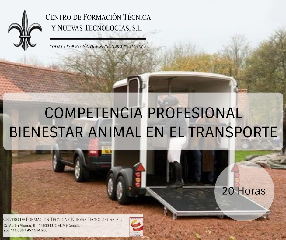 Centro de formaci n t cnica y nuevas tecnolog as 2018 for On centro de formacion