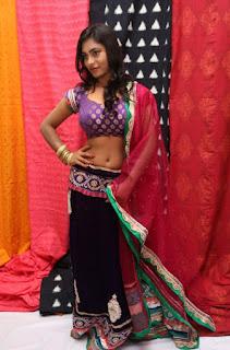 model priyanka agastin pics pochampally ikat art mela 2015 5d5e613