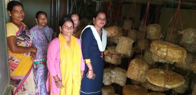 REAL STORY -दिखावे से दूर महिलाओं की आत्मनिर्भरता,अब तक नहीं मिली सरकारी मदद,मशरुम की खेती कर हजारों की कमाई..