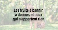 Les fruits à bannir, à donner, et ceux qui n'apportent rien