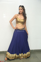 Malvika Raaj in Golden Choli and Skirt at Jayadev Pre Release Function 2017 ~  Exclusive 086.JPG