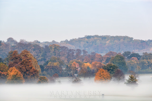 Evening mist shrouds autumn trees on the Wimpole Estate in Cambridgeshire