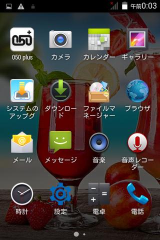 【Polaroid pigu】実は使う人を選ぶスマートフォン 11