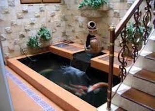 kolam ikan minimalis lahan sempit, kolam ikan minimalis lahan sempit di dalam rumah, kolam ikan minimalis dalam rumah