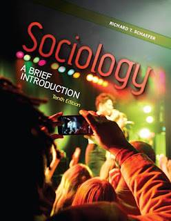 Sociology A Brief Introduction 10th Edition