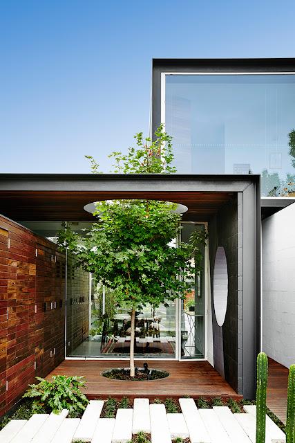 ปลูกต้นไม้ในบ้านโมเดิร์น