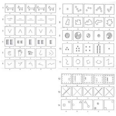 Tes Psikologi Psikotes Gambar Dengan Nilai Iq 183 Lama Pedia