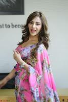 Angela Krislinzki Rogue Movie Fame Telugu Actress in Saree Backless Choli 089.JPG