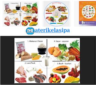 Makanan Jenis Karbohidrat dan Lemak Sebagai Sumber Energi
