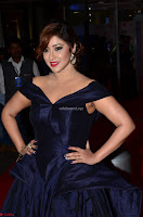 Payal Ghosh aka Harika in Dark Blue Deep Neck Sleeveless Gown at 64th Jio Filmfare Awards South 2017 ~  Exclusive 012.JPG