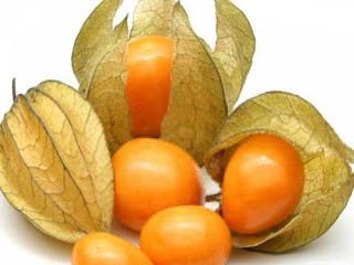 Cape gooseberry fruit images wallpaper