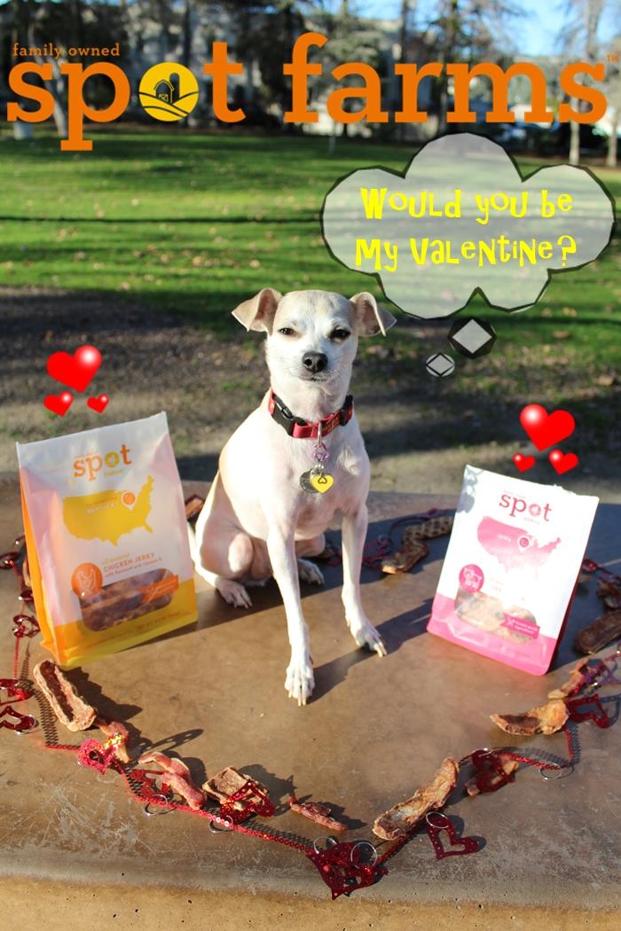 Happy's Valentine's Day Ideas with Spot Farms