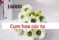 Phu kien hoa pha le tai Tay Mo