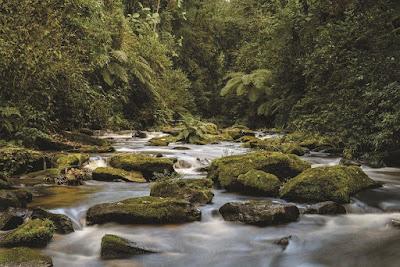 Legado das Águas terá jardim sensorial e trilha com acessibilidade