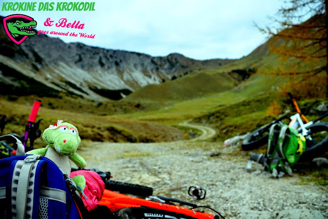 Nici Krokodil Bella und Krokine auf Biketour