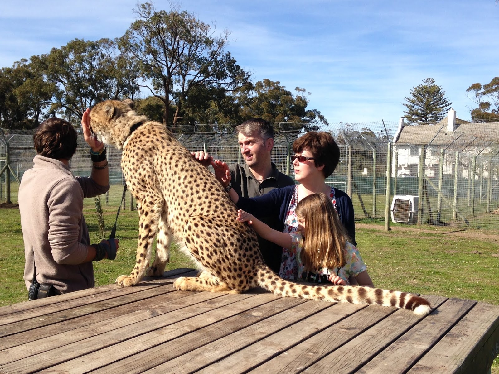 Rev T, the Tubblet and me stroking a cheetah