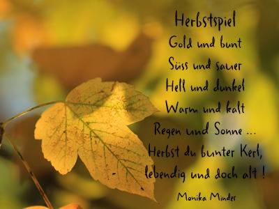 Das Leben ist Bunt Herbstsonne