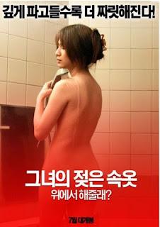 Falling Housewife (2009)