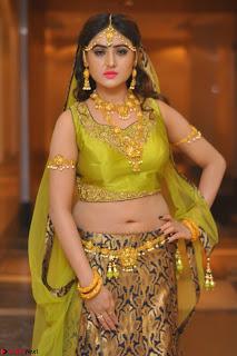 Sony Charishta in Green Choli Ghagra Transparent Chunni Ethnic Wear March 2017 039.JPG