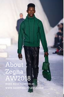 All about Zegna AW2018 collection, their logo, jaquard and more