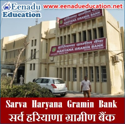 Officer posts in Sarva Haryana Gramin Bank : 100