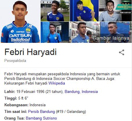 Febri Haryadi Profil Biografi Pemain Sepak Bola Dunia