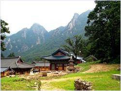 วัดซินฮึงซา (Sinheungsa Temple)
