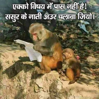 zoozoo Funny Images: Mean Exam Me Pass Q Nahi Hua ?