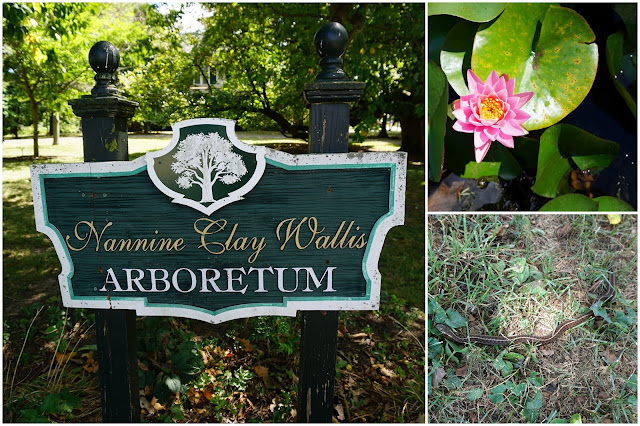 Nannine Clay Wallis Arboretum Collage