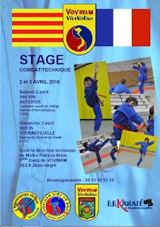Affiche stage franco-catalan  vovinam viet vo dao