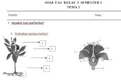 Soal PAS Kurikulum 2013 Kelas 4 SD Semester 1 Berdasarkan Kisi-Kisi