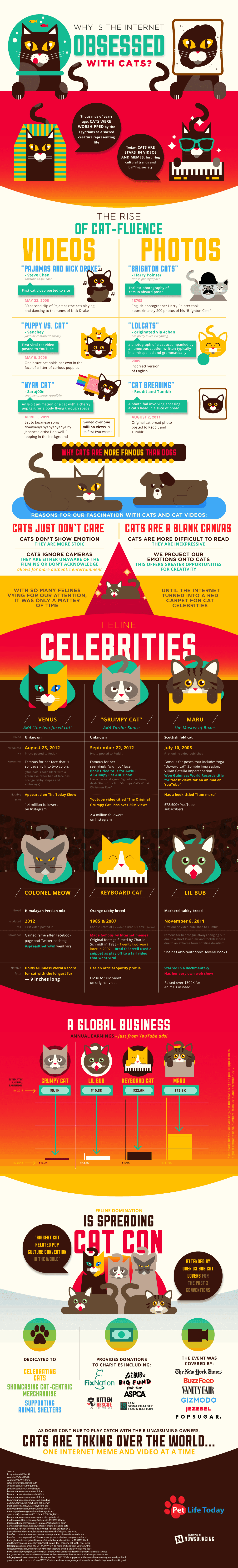 Why Is The Internet Obsessed With Cats? #infographic