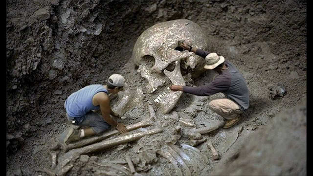 Largest Museum In The World Revealed How They Destroyed Nephilim Skeletons
