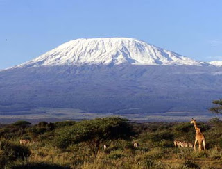 Tanzania Sightseeing. Your Travel Guide to Tanzania ...  Tanzania Famous Places