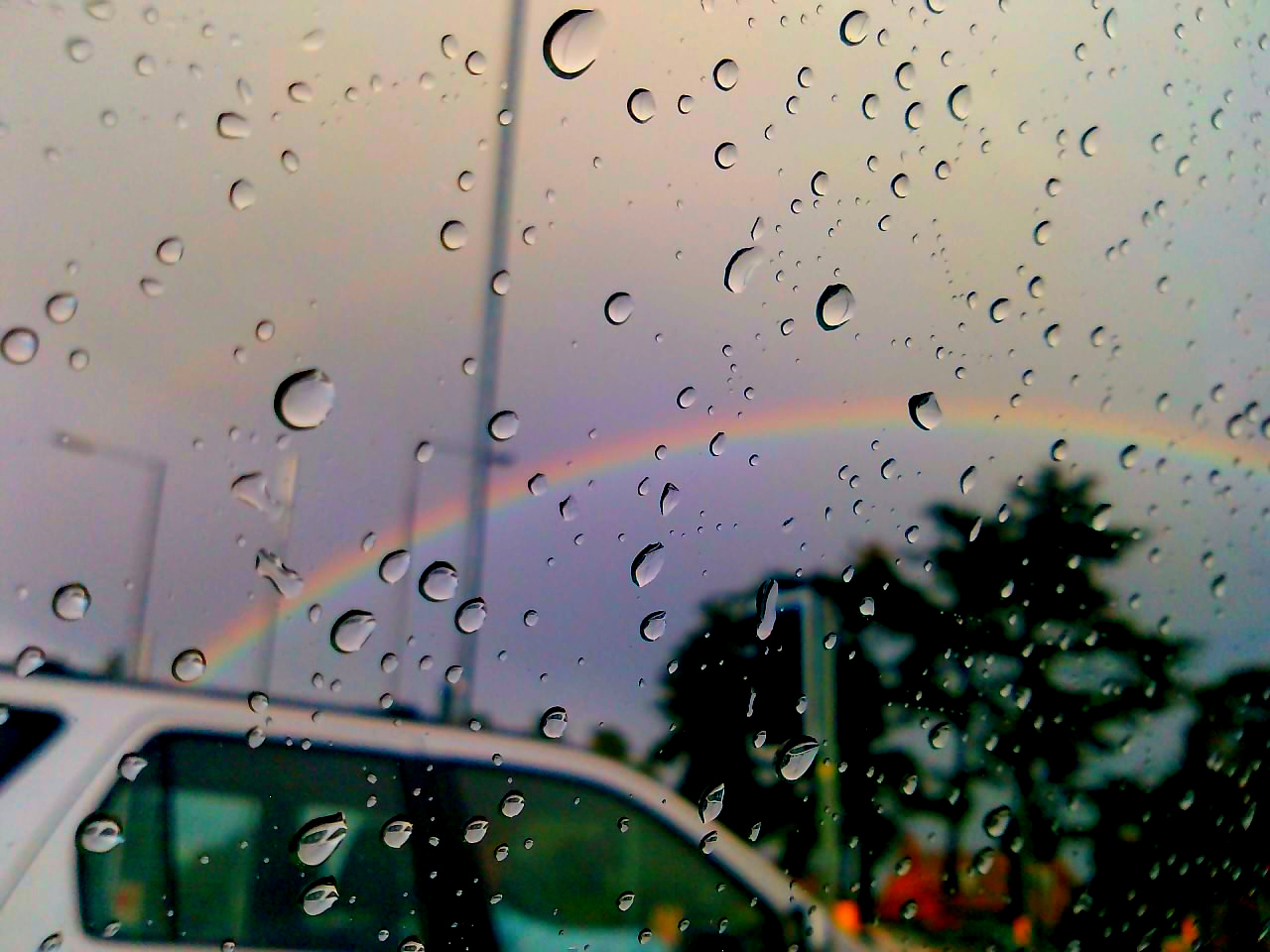 Poets Of The Fall Wallpaper Nikita Vattas We Cannot Have A Rainbow Without A Little Rain