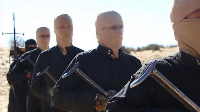 Los que se unen a Daesh: educados, de países ricos y desempleados