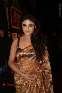 Actress Model Sony Charishta Stills in Beautiful Embroidery Saree at Gemini TV 2016 Puraskaralu Event  0059.JPG
