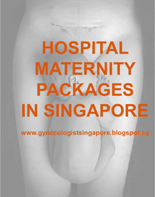 Maternity Package Singapore Review