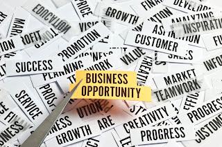 peluang usaha kecil yang cocok di tahun 2017