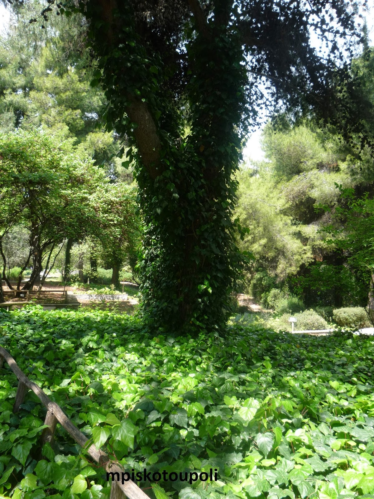 green places17