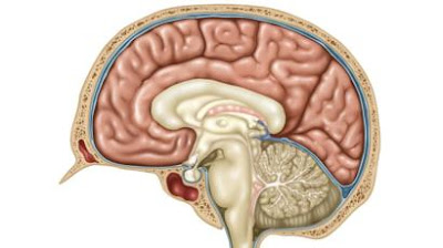 Bulimia brains 'use food to avoid negative thoughts'