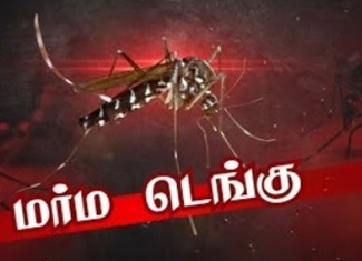 Dengue fever | News 7 Tamil