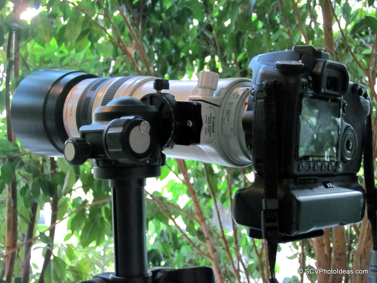 Sunwayfoto DDH-02 on Sunwayfoto XB-44 LP ball head - as gimbal - back